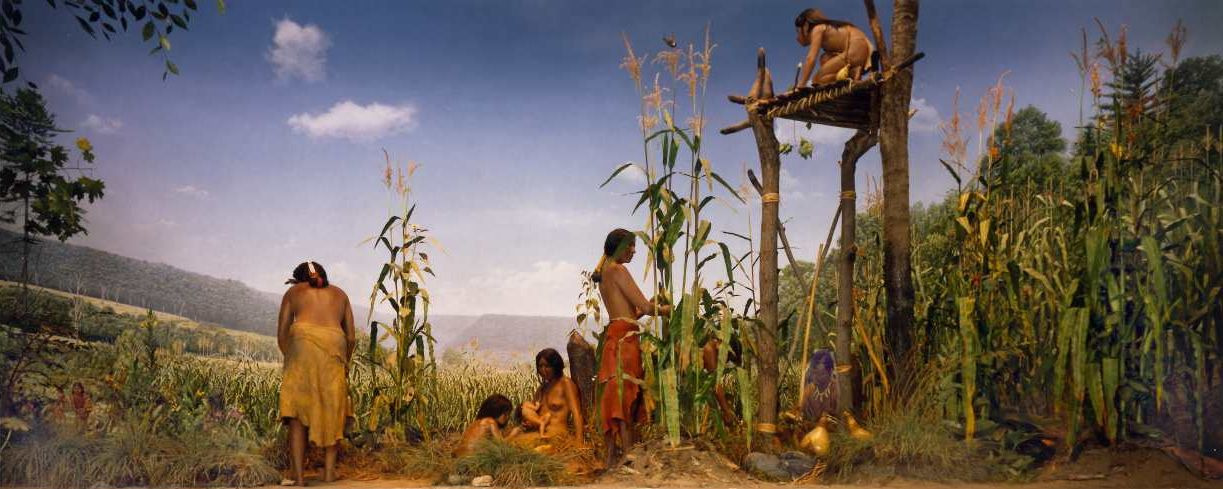 Photograph of diorama depicting Iroquois family planting beans, corn, and squash. For educational purposes only.