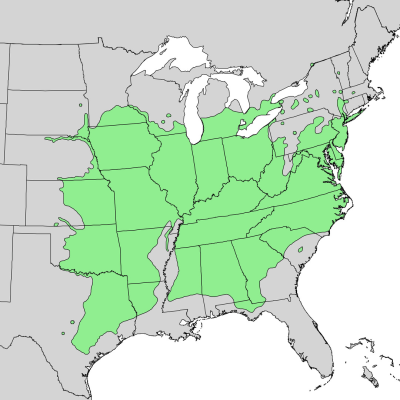 Range map of the Black Walnut